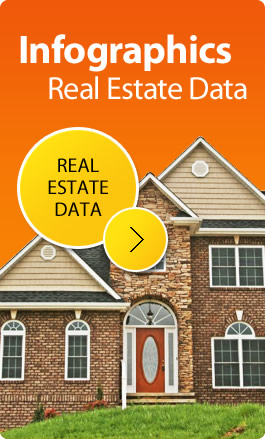Foreclosure Infographics: Real Estate Data